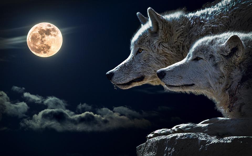 Wolf Gods and Goddesses: Leto, Artemis, Mars, the Morrighan