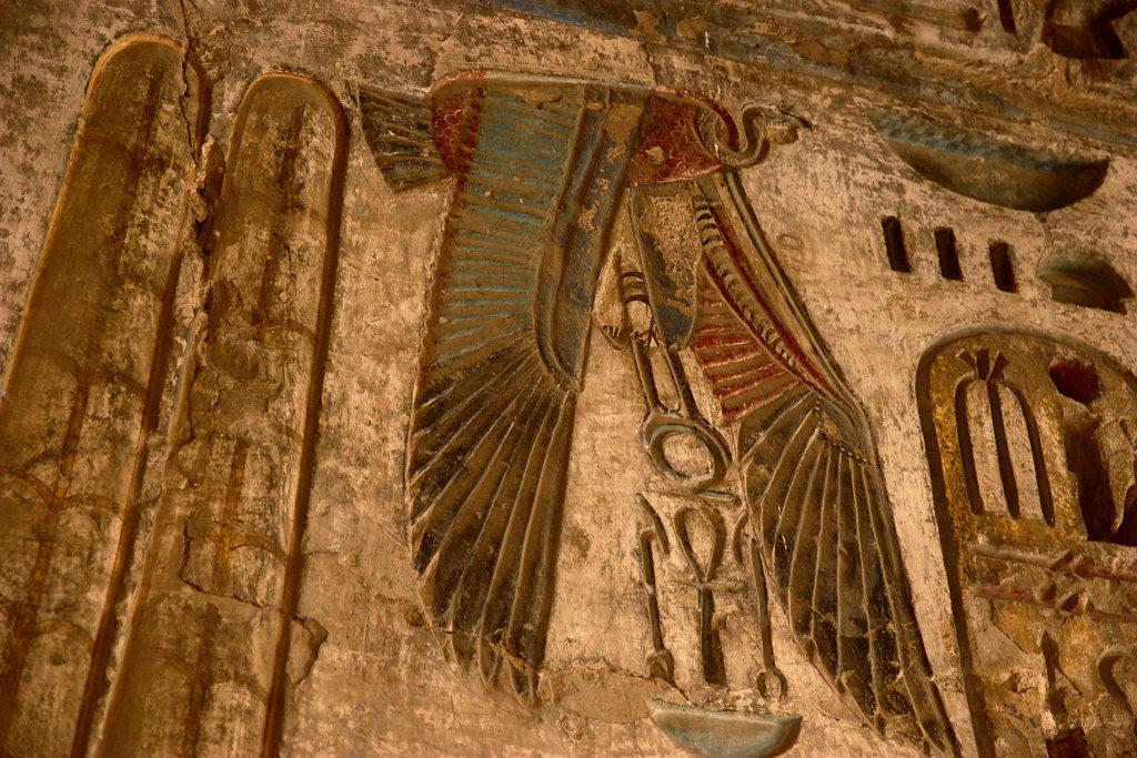 Augury Bird Divination: History & How to Read Bird Flight